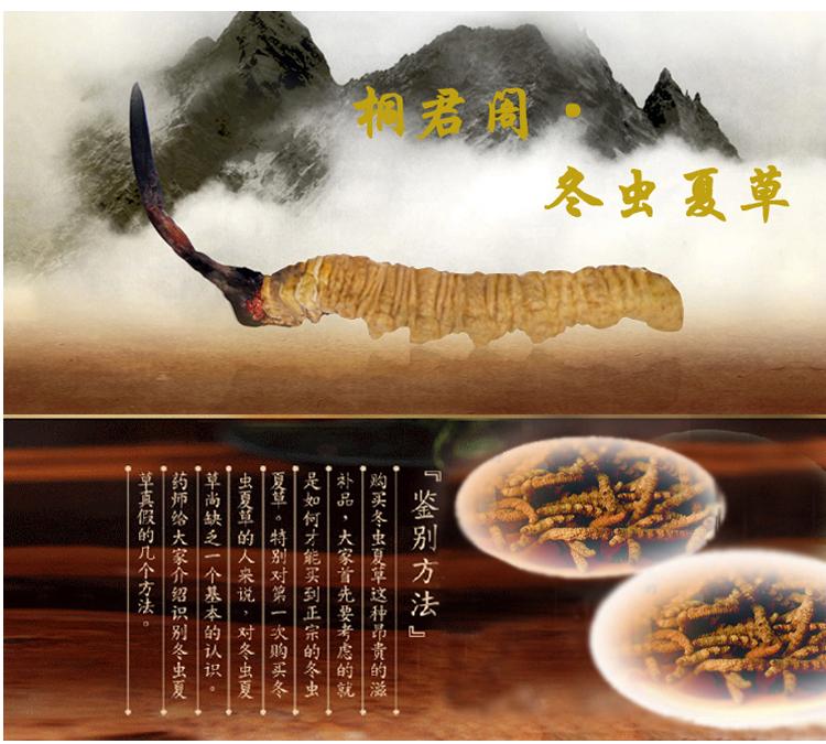 太极(桐君阁牌),冬虫夏草,一级10g(木盒)桐君阁 西藏那曲,调节免疫力,抗肿瘤