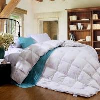 富安娜 FUANNA 家纺羽绒被子 鹅绒被芯 臻芯鹅绒冬厚被 1.5米床适用(203cm*229cm)