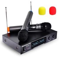 纽曼(Newmine)DM-669 无线麦克风话筒 电脑K歌会议一拖二无线话筒