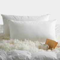 大朴(DAPU)枕芯家纺 白鹅羽毛枕头 星级酒店枕 羽毛枕芯 单只装 48*74cm