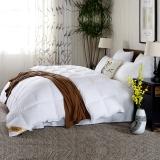 鸿润 优雅宝贝 被芯家纺 全棉70%白鸭绒被 舒适保暖羽绒被 冬被 被子 白色 填充量0.9kg 160*210cm