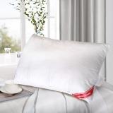 梦洁家纺(MENDALE)枕芯 成人护颈单人枕 大豆纤维枕头 单只装 50*70cm