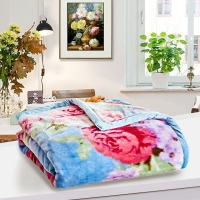 梦洁家纺出品 MAISON 毯子 加厚盖毯午睡毯 办公室沙发休闲毯 双层厚毯 花千骨 150*200cm