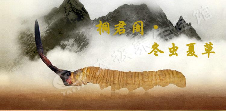 冬虫夏草,太极(桐君阁牌),5g(中断、袋)(桐君阁)西藏那曲,调节免疫力,抗肿瘤消费级虫草