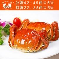 阳澄湖大闸蟹5对装1988元,公4.2-4.5母3.2-3.5两