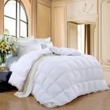 富安娜家纺出品圣之花被子冬被羽绒被臻暖鹅绒冬厚被1.5米床(标准)白色