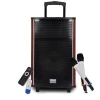 新科(Shinco)T511 广场舞音箱 音响 户外便携式蓝牙拉杆音箱双麦克风12寸(黑色)
