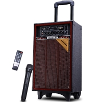 新科(Shinco)天籁2号B 广场舞音箱 音响 户外便携拉杆音箱插卡带话筒10寸(黑色)