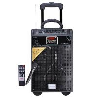新科(Shinco)天籁7号 广场舞音箱 音响 户外拉杆音箱插卡便携式播放器(黑色)