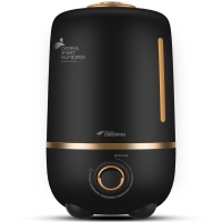 德尔玛(Deerma)加湿器 4L大容量 静音迷你办公室卧室家用香薰加湿 DEM-F450(炫酷黑)