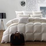斯诺曼(snowman)被芯家纺 保暖95%白鹅绒羽绒被 贡缎双人鹅绒被 冬被被子 白色 填充量1.1kg 180*220cm