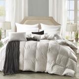 鸿雁 被芯家纺 全棉舒适鹅毛冬被 双人加厚加重保暖被子 白色 填充量2.3kg 200*230cm