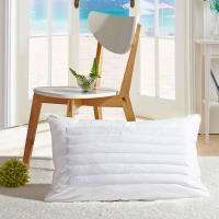 鸿润 优雅宝贝 枕芯家纺 荞麦羽毛枕芯 舒适枕头 白色 单只装 48*74cm