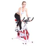 居康健身车,JFF009BS-YJ