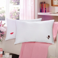 梦洁家纺出品 DreamCoCo 枕芯 双人情侣对枕 甜蜜柔丝枕头 一对装 50*70cm