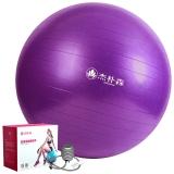 杰樸森(GEPSON)瑜伽球 65cm 專業瑜珈健身球加厚送打氣筒 紫色