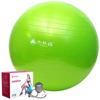 杰朴森(GEPSON)瑜伽球 65cm 专业瑜珈健身球加厚送打气筒 苏打绿