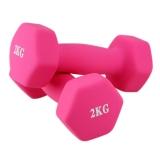 诚悦运动健身器材磨砂浸塑哑铃4公斤 CY-099粉色 (二只装 单只2公斤)