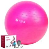 杰朴森(GEPSON)瑜伽球 65cm 专业瑜珈健身球加厚送打气筒 玫瑰红色