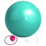 弥雅(MIYA UGO)瑜伽球 定位加厚防爆健身球孕妇助产分娩球 水蓝色55cm