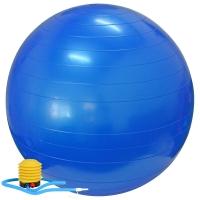 乐士Enpex 65cm瑜伽球 加厚防爆健身球 蓝色