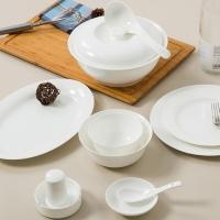 SKYTOP斯凯绨 碗盘碟碗筷陶瓷骨瓷餐具套装 46头白瓷
