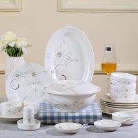 乐享 餐具套装56头陶瓷碗碟套装景德镇骨瓷盘子礼品 白金花语