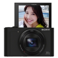 索尼(SONY) DSC-WX500 数码相机 黑色(1820万有效像素3英寸180度可翻转屏 30倍光学变焦 Wi-Fi分享上传)