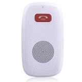 朗琴(ROYQUEEN) T300GT 蓝牙 温莎白 蓝牙4.0 带NFC 自动开关机 智能 免提通话 一拖二手机通话