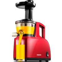 贝尔斯顿(Bestday)榨汁机低慢速多功能榨汁机家用果汁机料理机 ZZJ-801