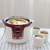 天际(TONZE)电炖锅隔水炖 煮粥煲汤燕窝BB粥1锅4胆DGD32-32CG 3.2L