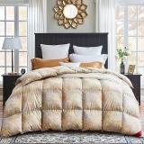 梦洁家纺出品 MAISON 被芯被子羽绒冬被 北纬臻绒95%白鹅绒厚被1.8米床 220*240cm