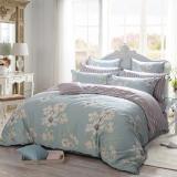 多喜愛(Dohia)床品套件 全棉印花簡約風四件套 床單款 淡香伊人 雙人 1.8米床 230*230cm