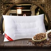 梦洁家纺(MENDALE)枕芯 单人草本成人枕头 植物养护荞麦枕 单只装 50*70cm