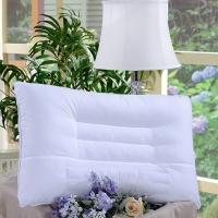 富安娜(FUANNA)家紡枕頭芯 決明子草本枕頭套裝一對 成人頸椎枕芯2個 決明子健康舒睡枕芯一對裝(74cm*48cm)