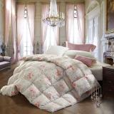 水星家纺 暖寐抗菌鹅绒冬被芯 95%白鹅绒羽绒被 加厚保暖被子 床上用品加大单人被子150*210cm