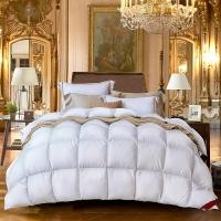 梦洁家纺出品 MAISON 被芯被子羽绒冬被 尊绒欧洲白鸭绒被 1.8米床 248*248cm