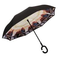 百盛洋伞 7103双层免持式反向伞双层雨伞汽车用长柄大伞男女晴雨两用直杆大号伞 晚秋