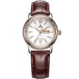 依波(EBOHR)手表 都市经典系列机械情侣表女表30010642