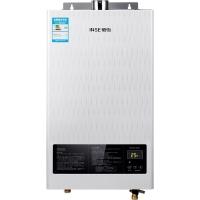 樱雪(INSE)10升小户型 燃气热水器 速热恒温强排式节能型热水器(天然气) JSQ20-10QH1211W