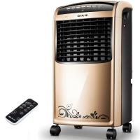 先锋(Singfun)遥控冷暖空调扇/冷风扇/电风扇/取暖器/电暖气/电暖器DG1209