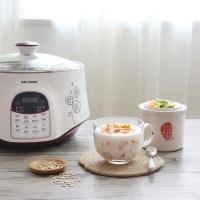 天际(TONZE)电炖锅隔水炖直炖 煮粥煲汤1锅3胆DGD22-22EWG 2.2L