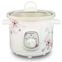 荣事达(Royalstar)电炖锅电炖盅白瓷母婴BB煲煮粥炖汤煲1.5L汤锅RBC-15M