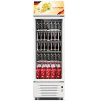德玛仕 DEMASHI 展示柜 商用 立式冷柜 冷藏柜 风直冷饮料保鲜柜 LG-260F