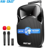 先科(SAST)A89WM 12英寸大功率重低音广场舞音响 移动舞台户外蓝牙拉杆音箱 扩音器 带二个无线麦克风