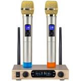 双诺 Z13 一拖二无线麦克风 无线手持话筒 双手麦 KTV 舞台无线话筒 专业K歌演出麦克风