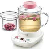小熊(Bear)迷你养生壶自动加厚玻璃电热杯煮花茶壶 玻璃滤网 YSH-A03C5 0.4L