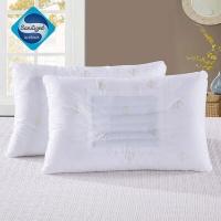 埃迪蒙托 idee MONTO家纺 决明子草本枕芯一对 成人枕头芯2个健康防螨抑菌舒睡枕一对装(74cm*48cm)