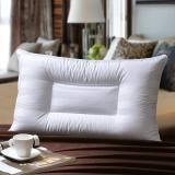 华康 枕头 全棉荞麦枕 填充甜荞麦壳枕芯 高度可调节枕头