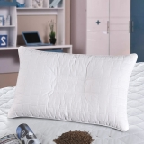 华康 枕头 儿童青少年枕芯 学生荞麦壳枕头50×32cm送枕套一只